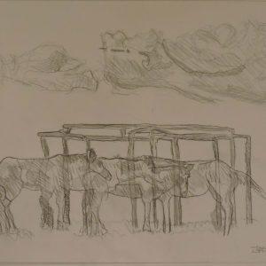 Original Drawings